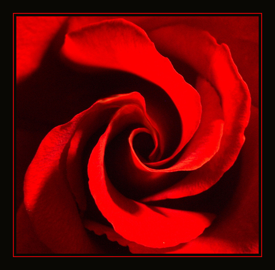 13 03 2010 роза мира челябинск cinemaserial 228 2 0